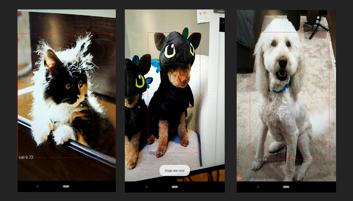 A guide to Object Detection with Fritz: Build a pet monitoring app