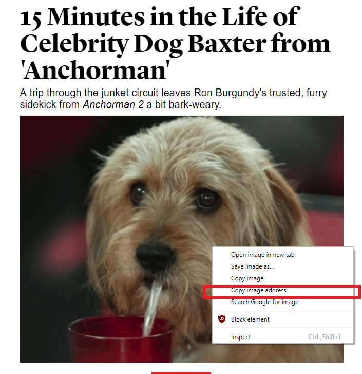 How to convert blog posts into Facebook Instant Articles
