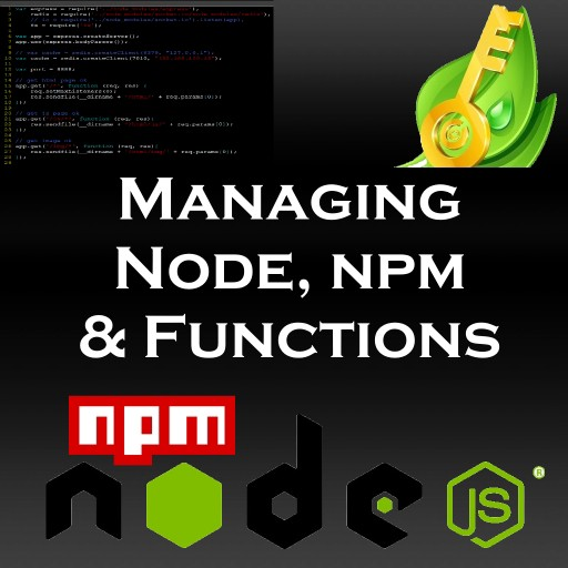 How to keep your sanity while managing NPM & functions in Node