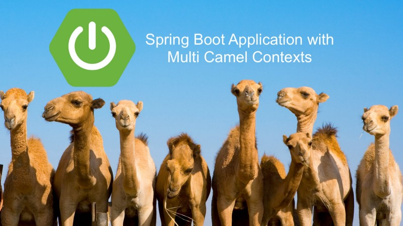 How to configure multiple Camel Contexts in the Spring Boot