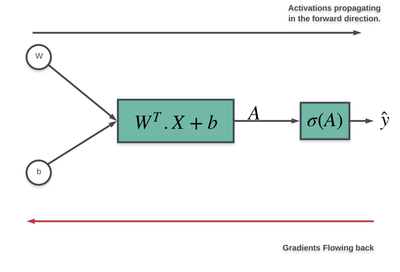 Demystifying Gradient Descent and Backpropagation via