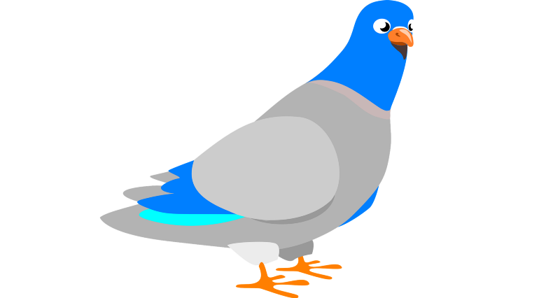 HTTPS explained with carrier pigeons
